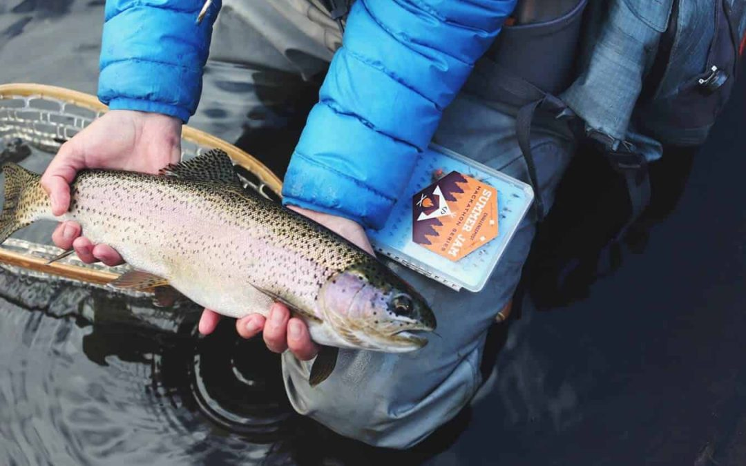 Gifts For Fly Fisherman; 20 Best Ideas In 2021